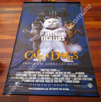 CATS and DOGS Banner
